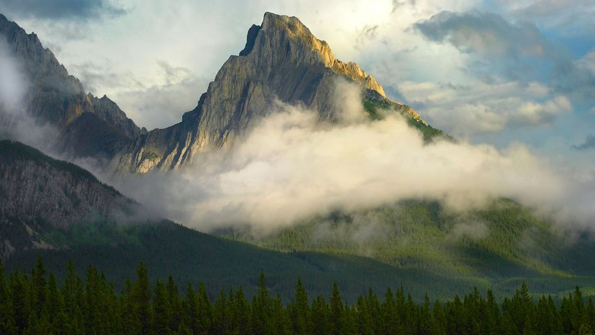 Opal Range surrounded by fog, Kananaskis Country, Alberta