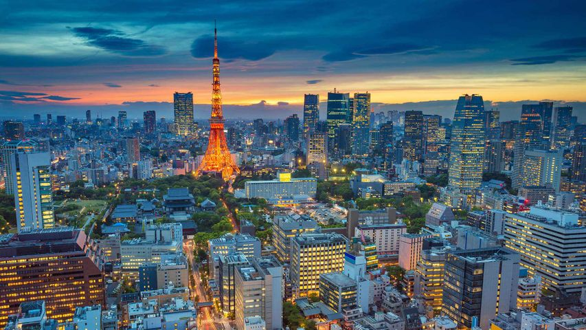 「夕暮れの東京タワー」
