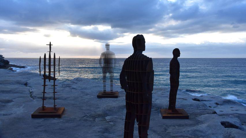 'April Pine: Shifting Horizons' at Sculpture by the Sea, Bondi, 2018