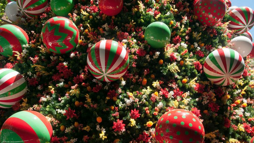 Close-up of Christmas tree decorations in Martin Place, Sydney, New South Wales