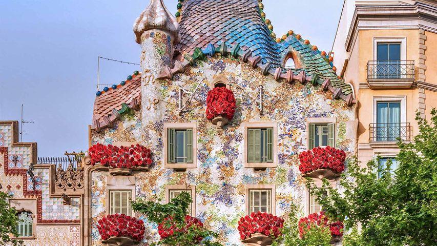 "Die Casa Batlló in Barcelona. Zum ""Diada de Sant Jordi"" (Georgstag) in Katalonien"