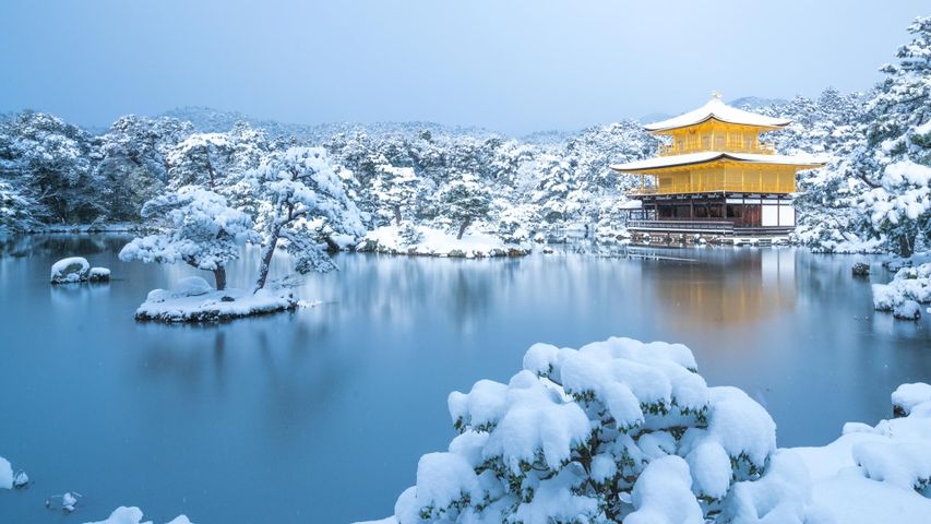 Kinkaku-ji-Tempel im Winter, Kyoto, Japan
