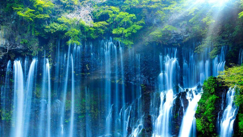 「白糸の滝」静岡, 富士宮市