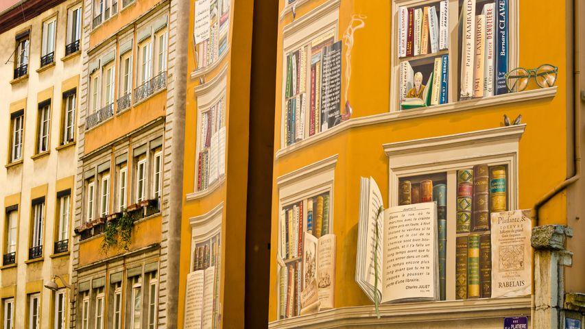 """Fresque """"La bibliothèque de la cité"""" située dans le centre-ville de Lyon"""