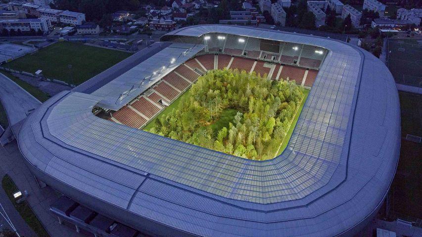 Klaus Littmann's 'FOR FOREST: The Unending Attraction of Nature' in Wörthersee Stadion, Klagenfurt, Austria