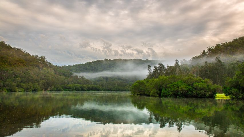 water outdoor landscape tree fog nature mountain cloud