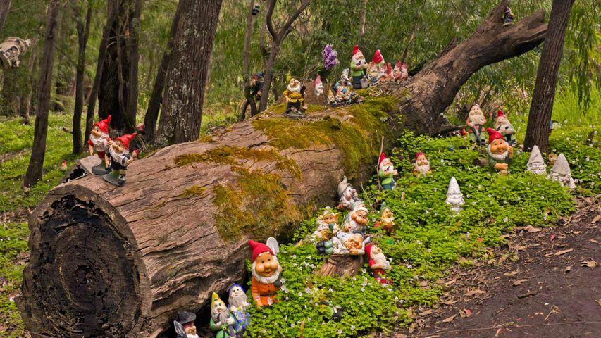 Gnomesville, dans le Comté de Dardanup, Australie